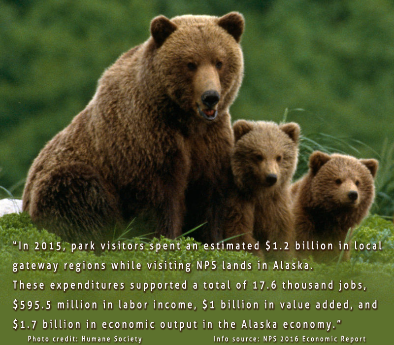 Do NOT allow hibernating grizzlies & their cubs to be killed in their dens!